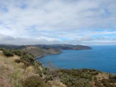Project West Wind in Makara