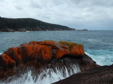 Red rocks