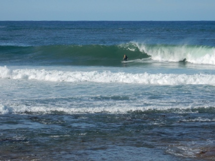 Spotting some surfers at Sandon Point Thirroul