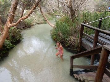 Walking Eli Creek on Fraser