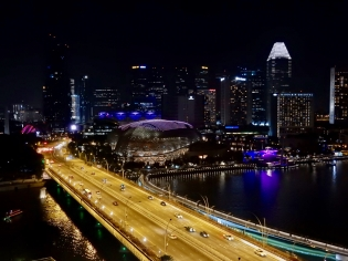 View from Fullerton Hotel